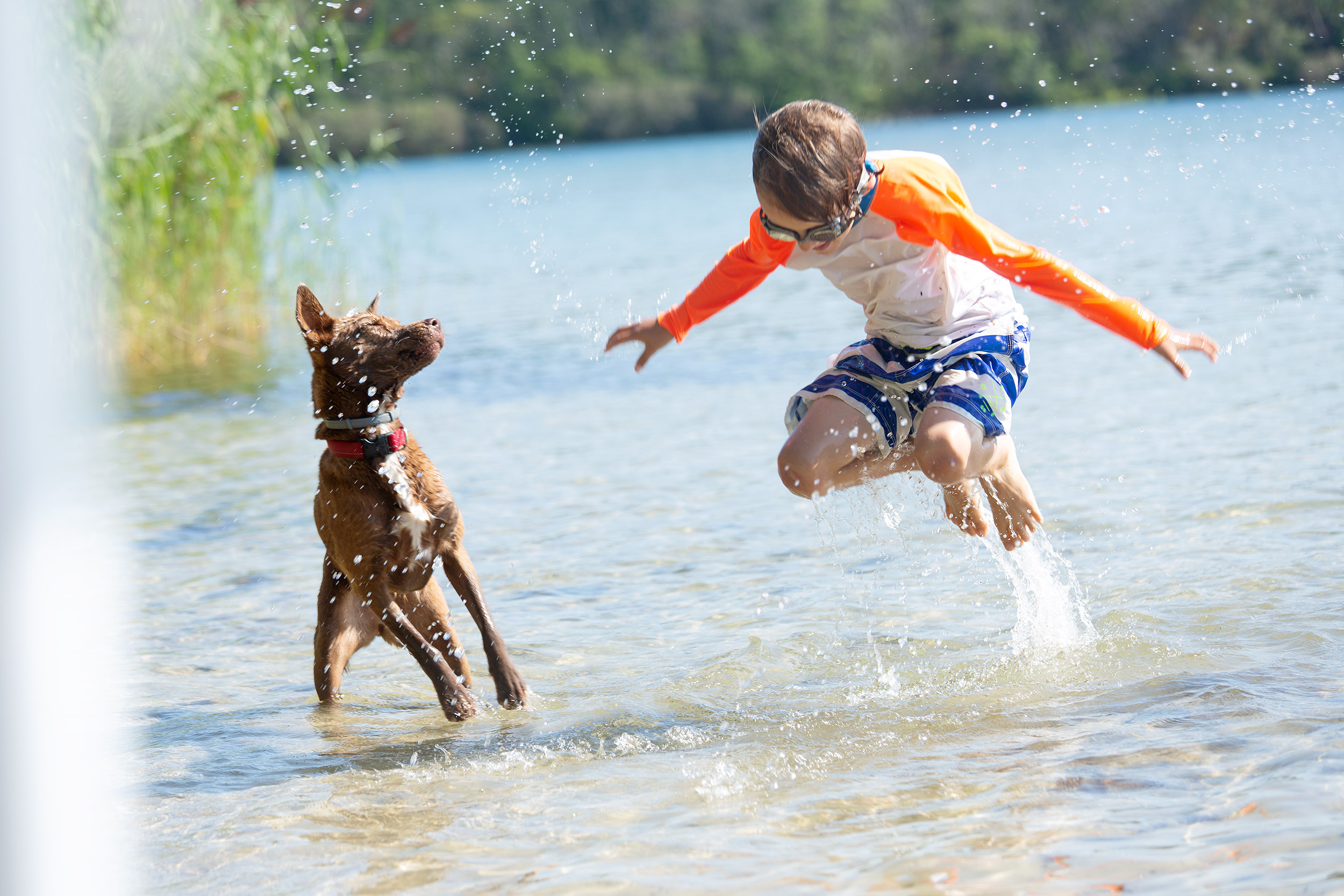 PHOTOGRAPHER | KIDS | CHILDHOOD | A BOY AND HIS DOG | REAL PLAY | JUMP | PLAY | Fun | 60