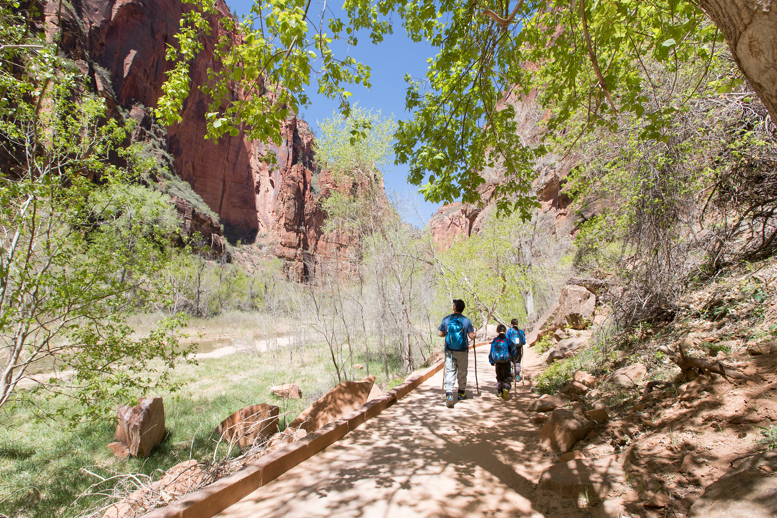 NATLPARKING_travel_rv_adventure_zionnarrows_0049_WB