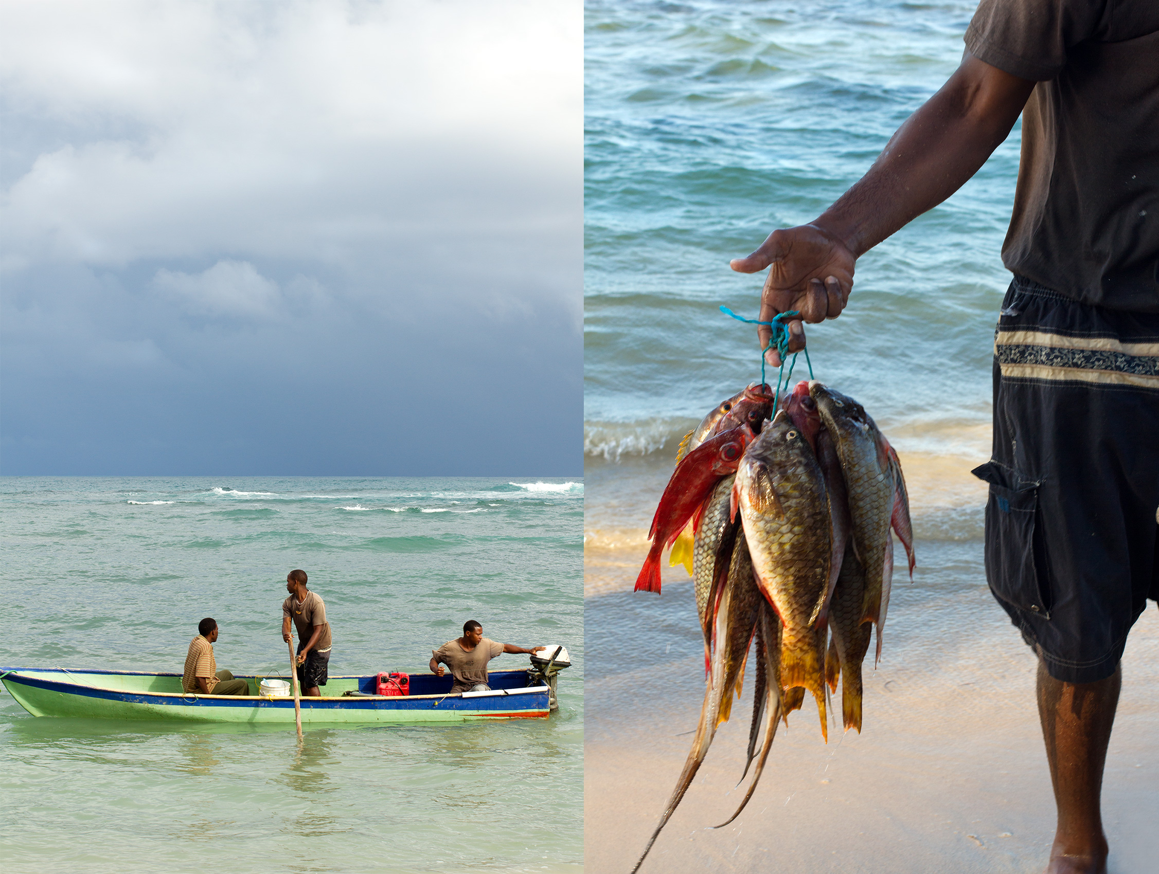 TRAVEL_CARIBBEAN_fish_ocean_fisherman_0077_2_WB2