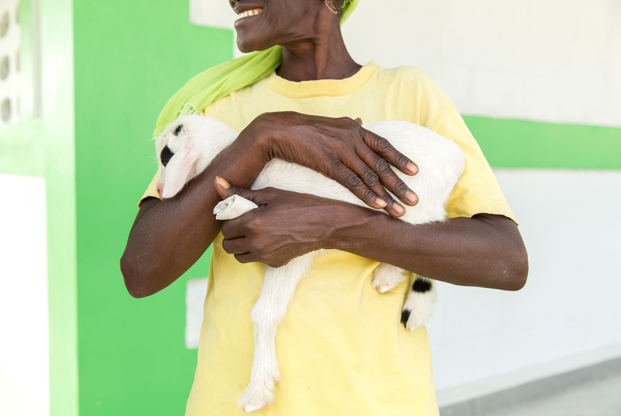TRAVEL_HAITI_goat_babygoat_ngo_country_womenempoweringwomen_3386_WB2