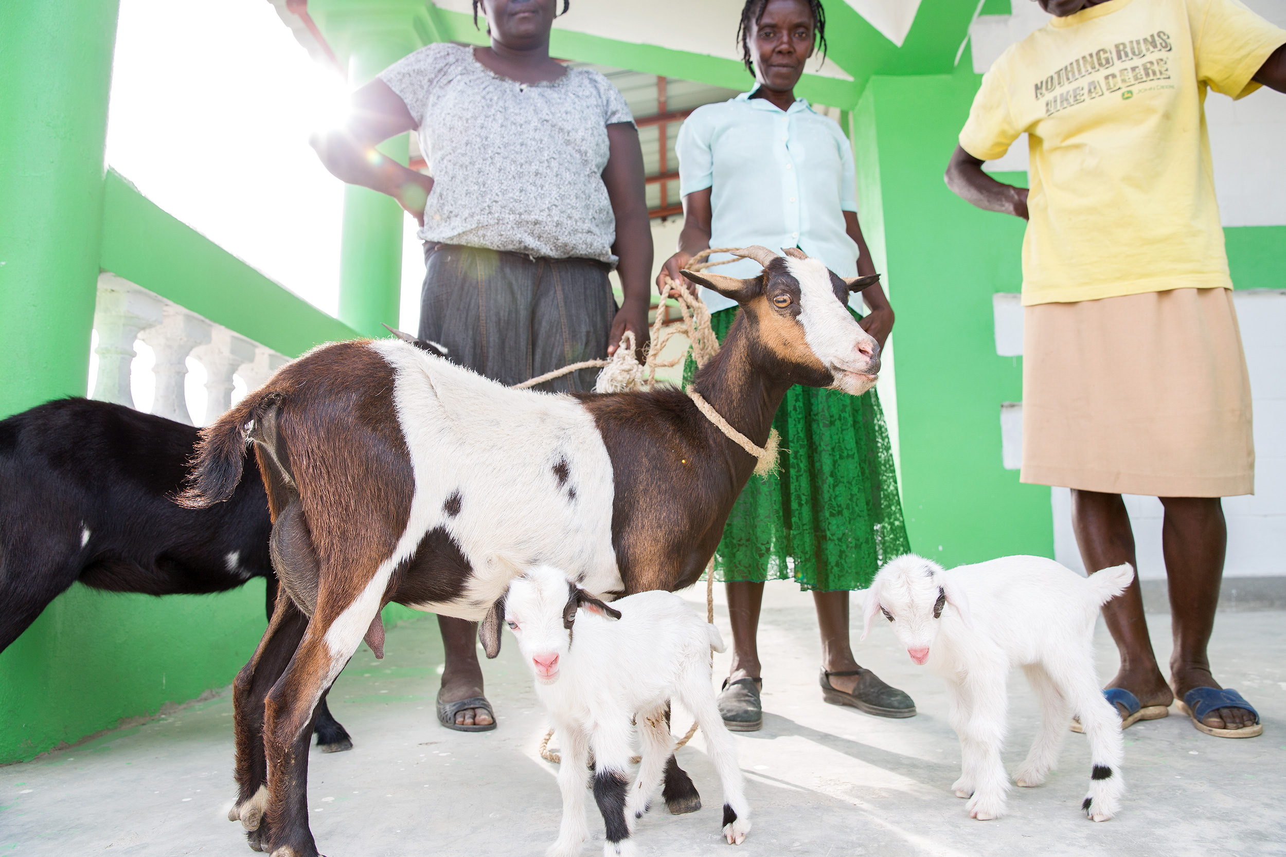 TRAVEL_NGO_FREETHECHILDREN_VILLAGE_women_goats_babygoat_3316_WB